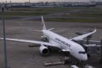 Mr.boneさんが、羽田空港で撮影した日本航空 A350-900の航空フォト(飛行機 写真・画像)