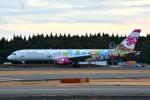 トロピカルさんが、成田国際空港で撮影したサンデー・エアラインズ 757-21Bの航空フォト(飛行機 写真・画像)