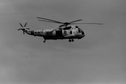 ヒロリンさんが、厚木飛行場で撮影したアメリカ海軍 SH-3H Sea King (S-61B)の航空フォト(飛行機 写真・画像)