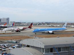 White Pelicanさんが、関西国際空港で撮影したKLMオランダ航空 787-9の航空フォト(飛行機 写真・画像)
