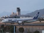 ジジさんが、伊丹空港で撮影した全日空 787-8 Dreamlinerの航空フォト(飛行機 写真・画像)