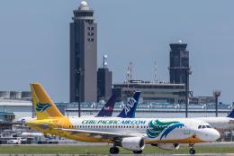 Y-Kenzoさんが、成田国際空港で撮影したセブパシフィック航空 A320-214の航空フォト(飛行機 写真・画像)