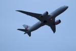 つっさんさんが、伊丹空港で撮影した日本航空 787-8 Dreamlinerの航空フォト(飛行機 写真・画像)