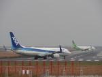 Shark.H.Niiさんが、佐賀空港で撮影した全日空 737-881の航空フォト(飛行機 写真・画像)
