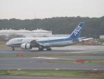 鷹71さんが、成田国際空港で撮影した全日空 787-8 Dreamlinerの航空フォト(飛行機 写真・画像)
