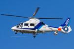 Scotchさんが、名古屋飛行場で撮影したオールニッポンヘリコプター AS365N2 Dauphin 2の航空フォト(写真)