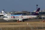 rokko2000さんが、成田国際空港で撮影したYTOカーゴ・エアラインズ 737-36Q(SF)の航空フォト(飛行機 写真・画像)