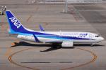 きんめいさんが、中部国際空港で撮影した全日空 737-781の航空フォト(飛行機 写真・画像)