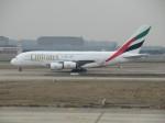 767は永久に不滅です!さんが、上海浦東国際空港で撮影したエミレーツ航空 A380-861の航空フォト(飛行機 写真・画像)