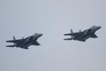 K.Tさんが、入間飛行場で撮影した航空自衛隊 F-15DJ Eagleの航空フォト(飛行機 写真・画像)