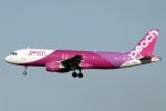 こうきさんが、成田国際空港で撮影したピーチ A320-214の航空フォト(飛行機 写真・画像)