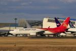 ☆ライダーさんが、成田国際空港で撮影した深圳航空 737-87Lの航空フォト(飛行機 写真・画像)