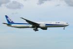 SIさんが、成田国際空港で撮影した全日空 777-381/ERの航空フォト(飛行機 写真・画像)