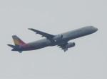 いねねさんが、中部国際空港で撮影したアシアナ航空 777-28E/ERの航空フォト(飛行機 写真・画像)
