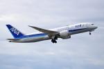 NANASE UNITED®さんが、成田国際空港で撮影した全日空 787-8 Dreamlinerの航空フォト(飛行機 写真・画像)