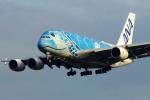 ppuw43さんが、成田国際空港で撮影した全日空 A380-841の航空フォト(飛行機 写真・画像)