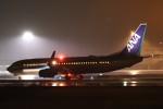 ゆう改めてさんが、熊本空港で撮影した全日空 737-881の航空フォト(飛行機 写真・画像)