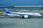 SFJ_capさんが、那覇空港で撮影した全日空 787-8 Dreamlinerの航空フォト(飛行機 写真・画像)