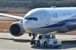 kiraboshi787さんが、長崎空港で撮影した全日空 777-281/ERの航空フォト(飛行機 写真・画像)