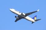 Hiro-hiroさんが、羽田空港で撮影したスカイマーク 737-8ALの航空フォト(飛行機 写真・画像)