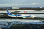 delawakaさんが、新千歳空港で撮影した全日空 737-881の航空フォト(飛行機 写真・画像)