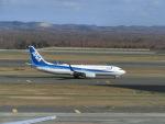 ヒロリンさんが、新千歳空港で撮影した全日空 737-881の航空フォト(飛行機 写真・画像)