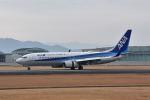 ワイエスさんが、熊本空港で撮影した全日空 737-881の航空フォト(飛行機 写真・画像)