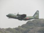 commet7575さんが、福岡空港で撮影した航空自衛隊 C-130H Herculesの航空フォト(飛行機 写真・画像)