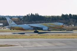 344さんが、成田国際空港で撮影したノックスクート 777-212/ERの航空フォト(飛行機 写真・画像)