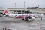 SFJ_capさんが、那覇空港で撮影した日本航空 767-346/ERの航空フォト(飛行機 写真・画像)