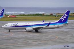 SFJ_capさんが、那覇空港で撮影した全日空 737-881の航空フォト(飛行機 写真・画像)