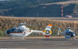 RZ Makiseさんが、種子島空港で撮影した海上自衛隊 TH-135の航空フォト(飛行機 写真・画像)