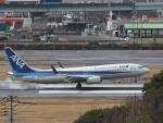ジジさんが、福岡空港で撮影した全日空 737-881の航空フォト(飛行機 写真・画像)