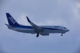 Love Airbus350さんが、旭川空港で撮影した全日空 737-781の航空フォト(飛行機 写真・画像)