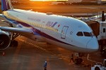 left eyeさんが、松山空港で撮影した全日空 787-8 Dreamlinerの航空フォト(飛行機 写真・画像)