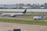 BOEING737MAX-8さんが、羽田空港で撮影した全日空 787-9の航空フォト(飛行機 写真・画像)