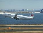 ヒロリンさんが、羽田空港で撮影した日本航空 737-846の航空フォト(飛行機 写真・画像)