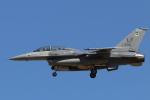 キャスバルさんが、ユマ国際空港で撮影したアメリカ空軍 F-16D Fighting Falconの航空フォト(飛行機 写真・画像)
