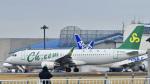 パンダさんが、成田国際空港で撮影した春秋航空 A320-214の航空フォト(飛行機 写真・画像)