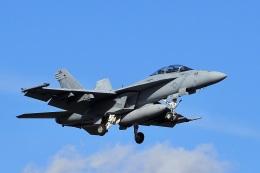 飛行機ゆうちゃんさんが、厚木飛行場で撮影したアメリカ海軍 F/A-18F Super Hornetの航空フォト(飛行機 写真・画像)