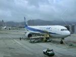 ヒロリンさんが、台北松山空港で撮影した全日空 767-381/ERの航空フォト(飛行機 写真・画像)