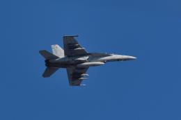 NFファンさんが、厚木飛行場で撮影したアメリカ海軍 F/A-18F Super Hornetの航空フォト(飛行機 写真・画像)