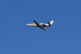 nontan8さんが、伊丹空港で撮影した朝日新聞社 560 Citation Encoreの航空フォト(飛行機 写真・画像)