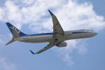 JA1118Dさんが、那覇空港で撮影した全日空 737-881の航空フォト(飛行機 写真・画像)