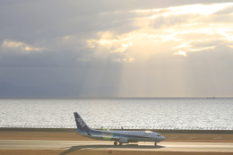 navipro787さんが、中部国際空港で撮影した全日空 737-881の航空フォト(飛行機 写真・画像)