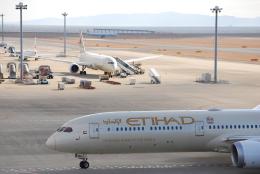 てりやきさんが、中部国際空港で撮影したエティハド航空 787-10の航空フォト(飛行機 写真・画像)