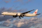 やつはしさんが、成田国際空港で撮影した日本航空 777-346/ERの航空フォト(飛行機 写真・画像)