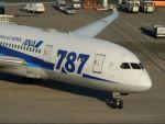 るかりおさんが、羽田空港で撮影した全日空 787-8 Dreamlinerの航空フォト(飛行機 写真・画像)