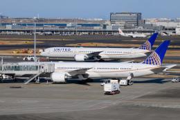 kuraykiさんが、羽田空港で撮影したユナイテッド航空 787-10の航空フォト(飛行機 写真・画像)