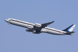 急行羽黒さんが、チェンマイ国際空港で撮影したタイ王国空軍 A340-541の航空フォト(飛行機 写真・画像)